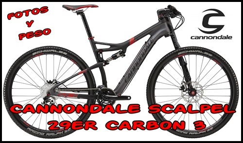 Cannondale World...
